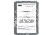 Сертификат НДШЛ 2008